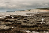 Seven Sisters Flint Band on the Birling Gap foreshore (Keith in Exeter) Tags: flint nodule layer stratum band cliff chalk sevensisters countrypark nationalpark sea rock seascape landscape beach rockpool eastsussex england geology petrology outdoor