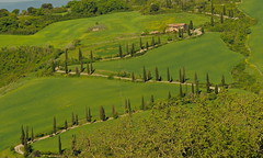 La Foce , Toscane (jean-marc losey) Tags: primavera spring italia vert villa toscana toscane printemps italie cyprs lafoce lacets d700