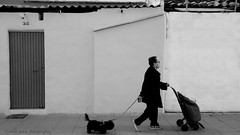 (toni jara) Tags: street bw dog blancoynegro exposure urbex monocromtico ladie
