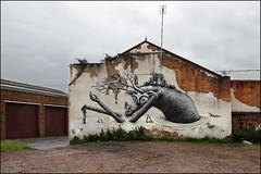 Phlegm (Alex Ellison) Tags: phlegm urban streetart boobs birmingham england uk