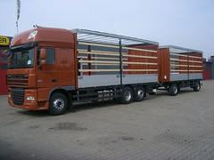 DAF XF 105.460 (Vehicle Tim) Tags: truck fahrzeug daf lkw xf pritsche