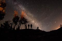 Sugarloaf (joereynolds2) Tags: trees light sky people tree night way long exposure michigan pollution milky starts