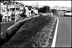 strolling in Kyoto 025 of 124 (hoshiryuk) Tags: leica bw film monochrome japan 50mm blackwhite kyoto hp5 m3 embankment 201602