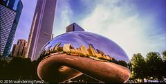Cloud Gate morning panoramic (wanderingYew2) Tags: sculpture chicago reflection 120 film mediumformat illinois downtown panoramic milleniumpark publicart cloudgate filmscan panoramiccamera 21panoramic 6x12 horseman6x12panoramiccamera horseman612panoramiccamera