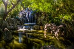 Chinese Garden, Sydney (satochappy) Tags: trees sun sunlight green grass garden rocks stones chinese chinesegarden