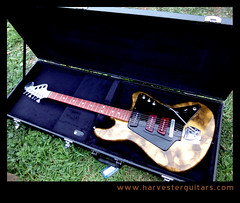 cased27 (Harvester Guitars) Tags: metal neck aluminum guitar guitars australia melbourne luthier harvester wandre
