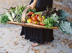 Farm to Table Shoot, starting at the Santa Barbara Farmer's Market (KarenWise) Tags: film santabarbara analog mediumformat farmersmarket foodphotography mediumformatfilm filmshooter karenwise karenwisephotography karenwisefoodphotography foodandartcom kellyoshiro