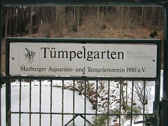Tmpelgarten (Jeff Coons) Tags: travel forest canon germany deutschland is europe hiking hike powershot hills marburg wandern lahn wander sd940