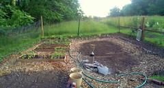 The Basic Layout (milfodd) Tags: june mobile garden photomerge pathways 2013 gardenbeds