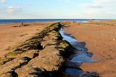 Redcar rocks! (overthemoon) Tags: uk greatbritain blue england people seascape beach landscape gold sand rocks unitedkingdom northsea lowtide northeast scar redcar rockpools