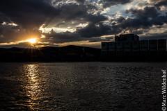 Sonnenuntergang - sunset (Marc Wildenhof) Tags: sunset reflection clouds germany deutschland licht wasser sonnenuntergang hessen frankfurt main wolken sonne spiegelung frankfurtammain reflektion
