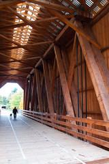 Chambers Bridge (brianv_vancouver) Tags: railroad bridge covered chambers tamronaf1750mmf28xrdiiild