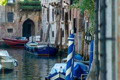 Venedig (Edi Bhler) Tags: italien plant building nature facade canal natur pflanze perspective structure vehicle waters bauwerk venezia motorboat gebude watercraft perspektive fassade veneto fahrzeuge motorboot gewsser tiefenschrfe 28300mmf3556 wasserkanal wasserfahrzeuge nikond3s
