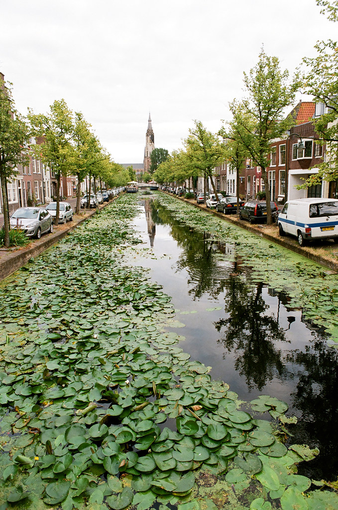 The world 39 s best photos of green and netherlands flickr hive mind - The water street magical town in holland ...
