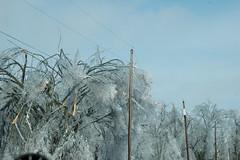 Ice Storm 2009 (4) (Porch Dog) Tags: nikon kentucky icestorm garywhittington january2009 marshallcokentucky
