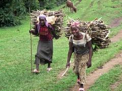 Girls Carrying Firewood (D-Stanley) Tags: girls ethiopia firewood jinka