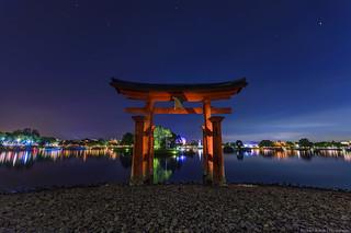 Through The Torii Gate