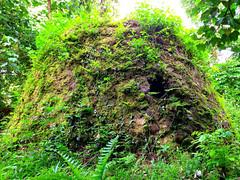 Japanese Bunker, Sokehs Rock