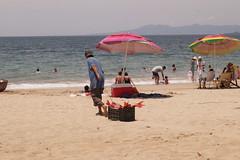 Comida para aves (Rene Venturoso) Tags: sun beach sand arena sayulita plaa