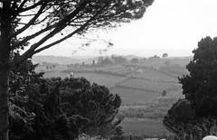Tuscany (doc-harvey) Tags: leica italien blackandwhite bw italy film clouds analog landscape italia tuscany analogue m3 elmarit90 toskana blancetnoir summicron50dr bwfp hwschlaefer docharvey
