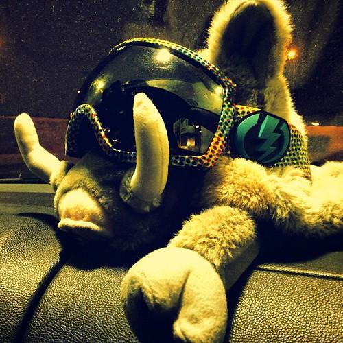 Свинка любит катаццо;) #волен #уииирайд ) #snowboard #neversummer #snowboardingisnotacrime #долборайд )