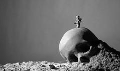 Rise of the lego machina wouldn't want to be ya. (von8itchfisk) Tags: death skull robot lego riseofthemachines ash machines terminator minifigure ashestoashes battisford vonbitchfisk