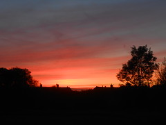 Embers of the day (Nibbler1977) Tags: sunset red sky orange cloud sun tree silhouette set skyline clouds sundown silhouettes sunsets burning setting