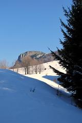 a Kakastaréj / the Creasta Cocoşului peak (debreczeniemoke) Tags: winter snow forest gutin hó tél erdő kakastaréj canonpowershotsx20is gutinhegység munţiigutâi creastacocoşului munţiigutin gutinmountains