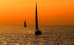 sailing at the golden hour - Tel-Aviv beach (Lior. L) Tags: travel light sea sky orange beach nature beautiful weather sailboat canon wonderful golden israel telaviv amazing mediterranean sailing dof seascapes awesome horizon perspective silhouettes telephoto hour beaches orangesky sailboats fabulous canondslr goldenhour mediterraneansea telephotolens canon70200f4l goldenlight greatweather beautifulnature wonderfulnature amazingnature goldenhours goldensea awesomenature telavivbeach horizonbeach fabulousnature canon600d travelinisrael canont3i canonkiss5 sailingatthegoldenhourtelavivbeach