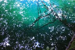 Изумруд (mooooooooonlight) Tags: blue mountains nature water landscape freshair peace power russia bluewater july caucasus mountainlake emerald bluelake freshness emeraldlake summerday вода природа россия пейзаж mountainlife горы kabardinobalkaria bluelakes lifeinthemountains июль голубой emeraldwater кавказ источник afeastfortheeyes голубоеозеро умиротворение голубаявода свежесть изумрудный голубыеозера кабардинобалкария julyday горноеозеро летнийдень caucasianlandscape hospitableland caucasianhospitality жизньвгорах горнаяжизнь свежыйвоздух кавказскийпейзаж гостеприимныйкрай изумруднаявода июльскийдень красиваяроссия