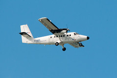 Skybus (thesetter) Tags: bird birds cornwall aircraft volunteering scillies rspb scillyisles gcbml choughwatch
