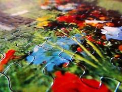 Pieces (zinvolle) Tags: world art colors beautiful cores effects photography pieces arte digitalart picture puzzle photograph zen harmony connection rompecabeza quebracabeca zinvolle