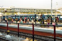 _DSC0015 (virendrashah29) Tags: udaipur selfhelp peopleatwork traval publicplace