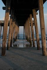 Out to Sea (Art Sarnese Photography) Tags: ocean beach 35mm evening newjersey nikon nj shore oceancity southjersey goldenhour ocnj nikond3300 d3300 afsdxnikkor35mmf18g