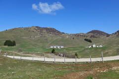 buse del Novegno (Tabboz) Tags: panorama primavera erba montagna strade cima prati vetta pascoli prealpi fioriture