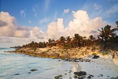 Amanece en Tulum (Juan Ig. Llana) Tags: costa mxico mar tulum playa paisaje palmeras amanecer yucatn diamantek rivieramaya cala caribe quintanaroo tumbonas