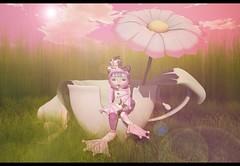 The Frog Princess (kikuriomizu) Tags: life cute blogger story kawaii second