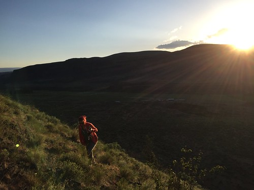 Hungate Canyon, Moses Coulee, Columbia River Plateau