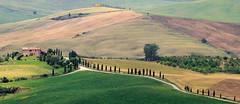 Toskana_Montalcino (postfuerentchen) Tags: italien italy eos rebel montalcino toscana tamron toskana canos 70300 100d