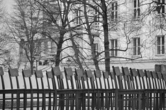 DSC_5432 [ps] - Awaiting (Anyhoo) Tags: trees winter urban blackandwhite bw sculpture art window loss wall architecture germany holocaust memorial chairs bare empty saxony leipzig rows sachsen repetition jewish publicart gdr jewishmemorial anyhoo gdrarchitecture gottschedstrase photobyanyhoo