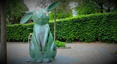 """""""Mate Hunting"""" (Perfect Day_) Tags: park rabbit bunny art nature statue outdoors sweden citypark bors boras canoneos600d"""