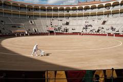Bullfight at Plaza de las Ventas, Madrid (Victor Shum) Tags: madrid travel spain bullfight