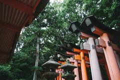 Fushimi Inari Taisha (gail m tang) Tags: travel japan kyoto inari torri taisha fushimi