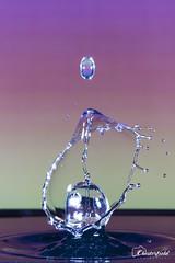 DSC00662 (David.Chesterfield) Tags: art water drops splash
