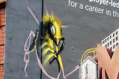 career Bee (PDKImages) Tags: flowers windows streetart beauty face daisies contrast manchester graffiti eyes kiss colours murals stunning daisy gods walls artinthecity manchesterstreetgallery