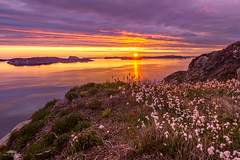 As the rain clears and the day ends (huddart_martin) Tags: sunset sea seascape norway clouds landscape islands evening dusk sony sigma cliffs hordaland cottongrass sotra 816mm sonya77