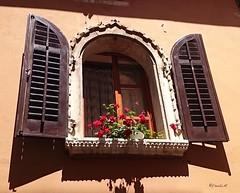 Poetry from the past - Porec/Istria (frenziM) Tags: flowers window architecture fleurs poetry fenster blumen poetic venetian fentre porec istria venezianisch vnitien