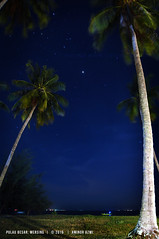 Pulau Besar, Mersing (aminorazmi) Tags: aminorazmi pulau besar mersing nightshots coconut tree island sultan iskandar marine park