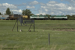 Big League (Trevor Sokolan) Tags: railroad canada hockey train nhl diesel tracks rail railway trains canadian locomotive sk prairie saskatchewan prairies railfan trainspotting gwr alco mlw railfanning greatwestern aneroid patrickmarleau m420 gwrs