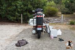20160412-2ADU-009 Kangaroo Island